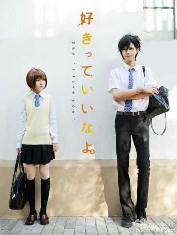 suki-tte ii na yo cosplay - tachibana mei and kurosawa yamato